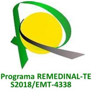 Logo remedinal